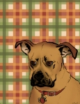 Illustration of Rock, a Dog